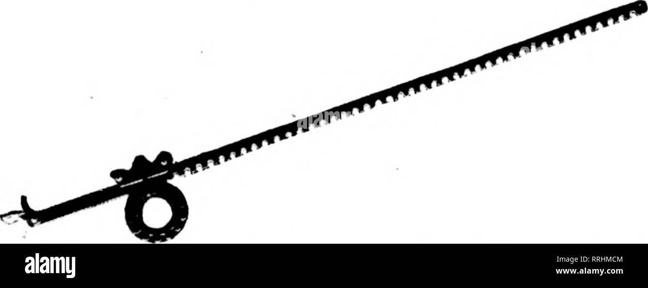 22565017 . Fioristi' review [microformati]. Floricoltura. Questo è l'albero  appendiabiti. Ci sono 9 di metallo bianco lers ...