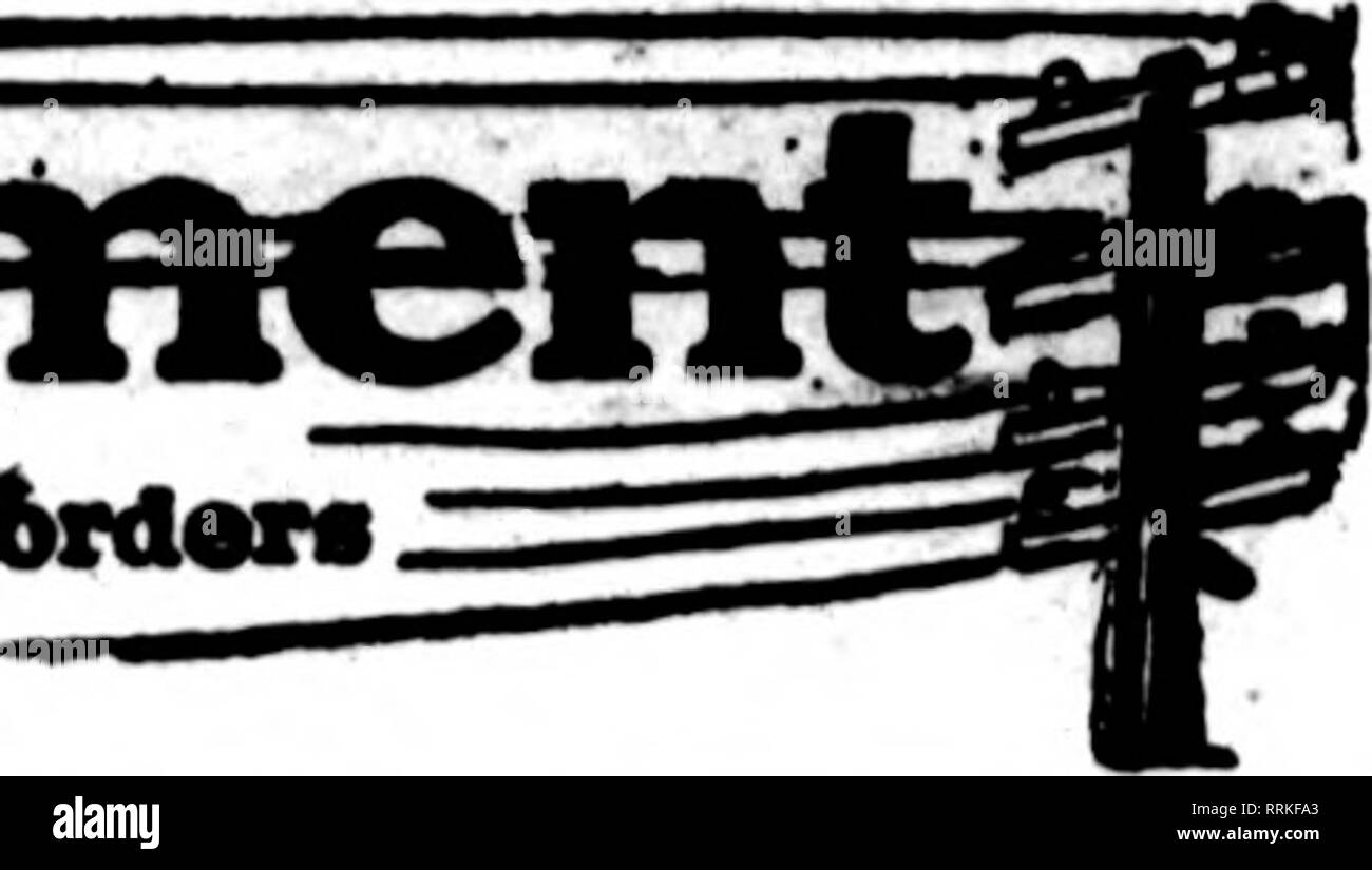 """. Fioristi' review [microformati]. Floricoltura. I fioristi' Riesaminare Decembek 28, 1916. I fioristi wbose card* avpMur su tho ritmi canrlnr questo bMUl* ar* praparad per fUl 6rd""""rs -'- da altri fioristi per consegna looal sui soliti basts.. John Breitmeyer i figli di Ciner Bnadwiy & Gratiot Atc^ DETROIT, Mich. Gli Stati fioristi' Consegna del telegrafo ass'n. HUGO SCHROETER 531 Woodward Ave. INC. DETROIT MICHIGAN GROSSEPOINTE """"""""""""^""""'7 HIGHLAND PARK B SCHROer^j^ 56 Broadway ** DETROIT MICHIGAN DETROIT, Mich. Ceppi, fiori 887 WeedwardI Arenne Stati F. T. D. Crabb & Hunter noral Co. ORAND RAPIDS Immagini Stock"""