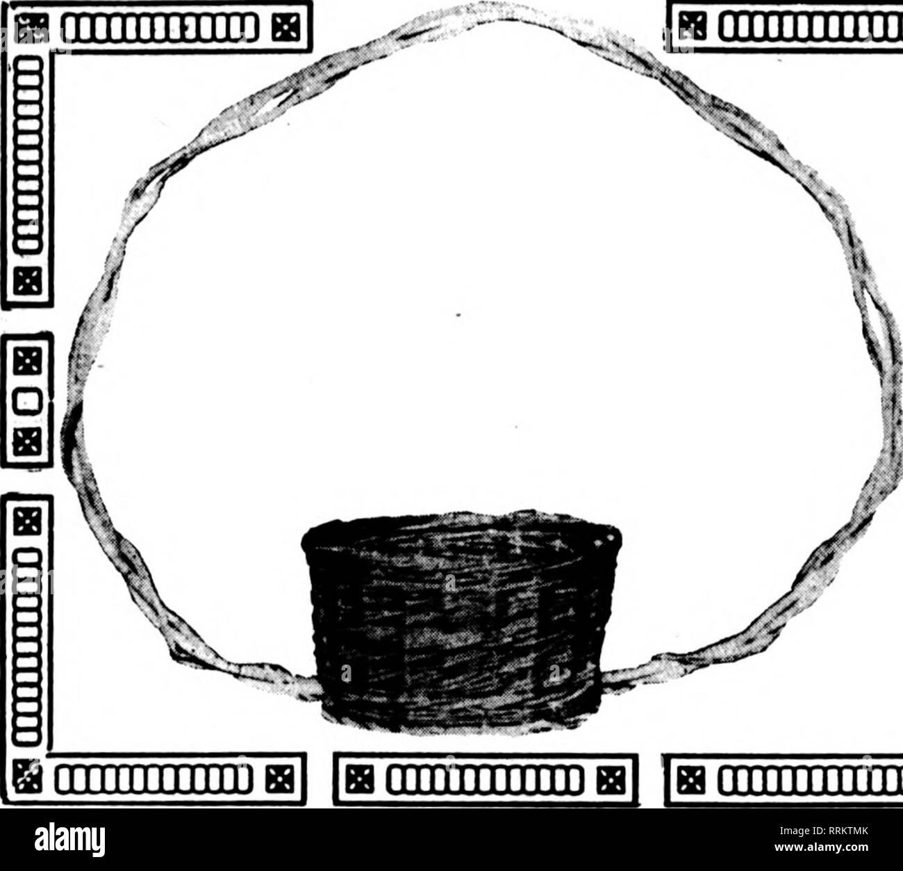 . Fioristi' review [microformati]. Floricoltura. MAUcii'l, 1917. I fioristi^ Rassegna 27. jBfiiiiniiiiiiiffll iffliiimiiiiiri] lamiiiiiiiiiiiffll Iffliiiiiiiiiiiiiiffl] Iffluiiimiiiiiia un Seasonable Snap ora è il momento di ottenere il vostro approvvigionamento di cestelli per la minore, early-fiori di primavera e la lampadina stock, come i tulipani, giacinti, Jonquils, ecc. Questi eccellenti qualità di cestelli sono proprio ciò che si desidera per la propria linea di piante soring. Realizzato su misura per tre quarti e i formati standard di 6 pollici e 6 pollici, 7 pollici e 8 pollici pentole. Una necessità per il fioraio vendita di piante in vaso. 1 dozzina per $4.20 2 dozzina per $8 Foto Stock