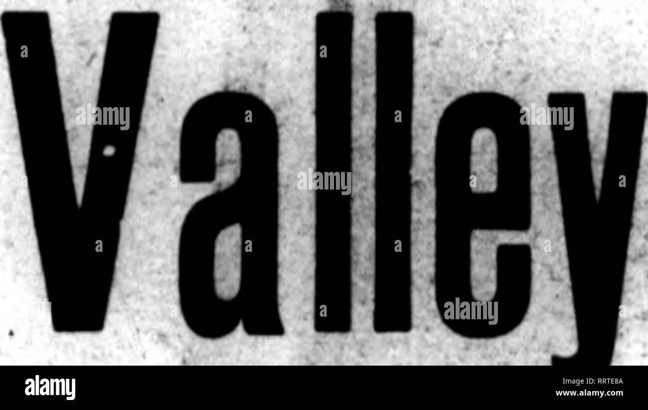 """. Fioristi' review [microformati]. Floricoltura. 61^ un settimanale ufficiale""""* fioristi. 5EEDSMEN ahd vivaisti. rUNnSTS* f""""UMJ""""INN"""" CO, SSft CutM BiMMtas. SIM Ommt AwMi%""""wm SU CNIGAmK Vol XXXIV. CHICAGO, luglio 30, J9l4. .^- PANSY SEMINA DI SIH HEDAL ORO PiWSY HKTORE ?!S:II^^££SS!ho presso l'International Horticultnrat mostra, beld al Orand palazzo centrale di New York City. Aprile, 1918. Questa splendida miscela è la ri-ult di anni di scrupolosa selezione da parte del Sig. William Sim (rinomata per i piselli dolci), Cliftondale, Massachusetts, apd stiamo offrendo il seme da l'ordinante per la prima ti Immagini Stock"""