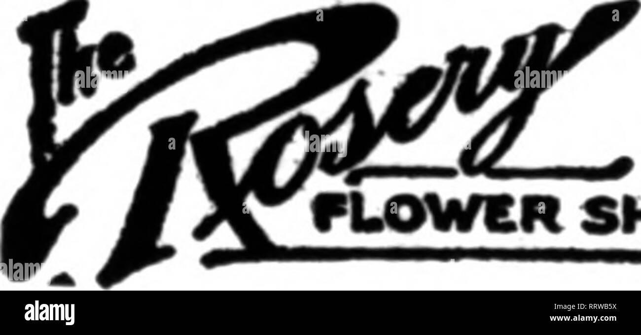 . Fioristi' review [microformati]. Floricoltura. Fioraio 413 Madison Ave., Cor. La 48th st. NEW YORK Bellevoe Avenue, Newport, B. I. MYER 609-llHadisonAYe.,NewYork LD.Phtne 5297riaxa Orand Oentral terminale, 42d San e Park Ave. New York (ramo Store. 37 EAST 42d St) Ordini per fiori o Fmit per ontcrolngr vaporizzatori, teatri, matrimoni ecc., riempito con un preavviso di pochi istanti. La handsomest fiore e frutto store in tutto il mondo. Il BOSTON FIORAIO X%% liberiane 34th St. MEW YORK (Tel. Noe. 322S e 4479 Murray HUl) Oloae al lesdlntr teatri e piroscafi. In qolok touch con il miglior wholesaleis. Perso Immagini Stock