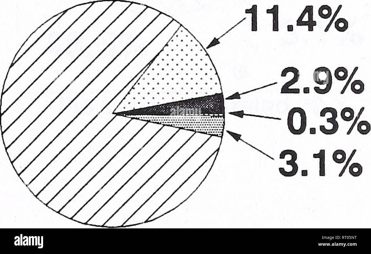 Bozeman datazione radiometrica