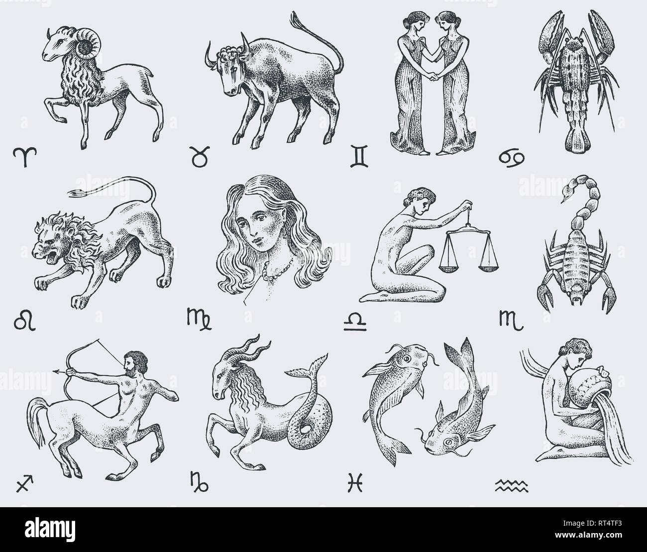 Calendario Oroscopo.Icone Dello Zodiaco Astrologia Oroscopo Con Segni