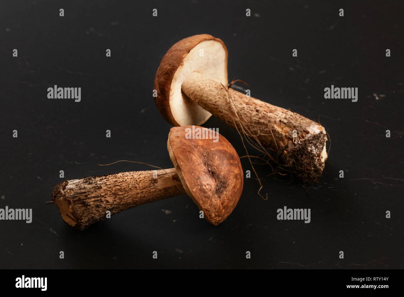 Due appena raccolto di funghi (scaber deviosgancio   Leccinum scabrum) via  lo sporco dalla 16a499da395c