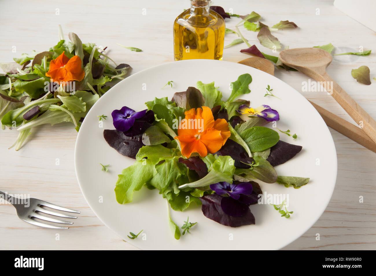 La lattuga e insalata di fiori su woody sfondo bianco Primavera, Pasqua Immagini Stock