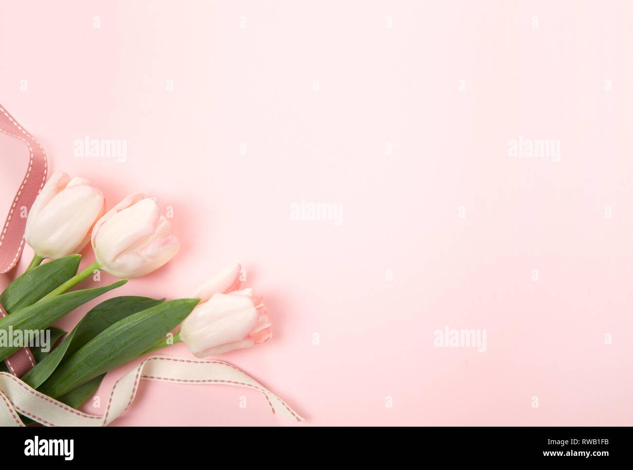Composizione Di Fiori Modello Realizzato Di Tulip Fiori Su Sfondo