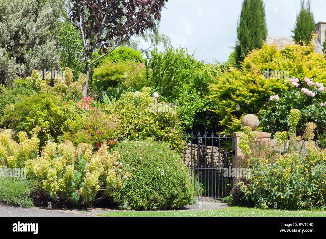 Foto Di Piante Sempreverdi porta di metallo al grazioso giardino in fiore con il rosa