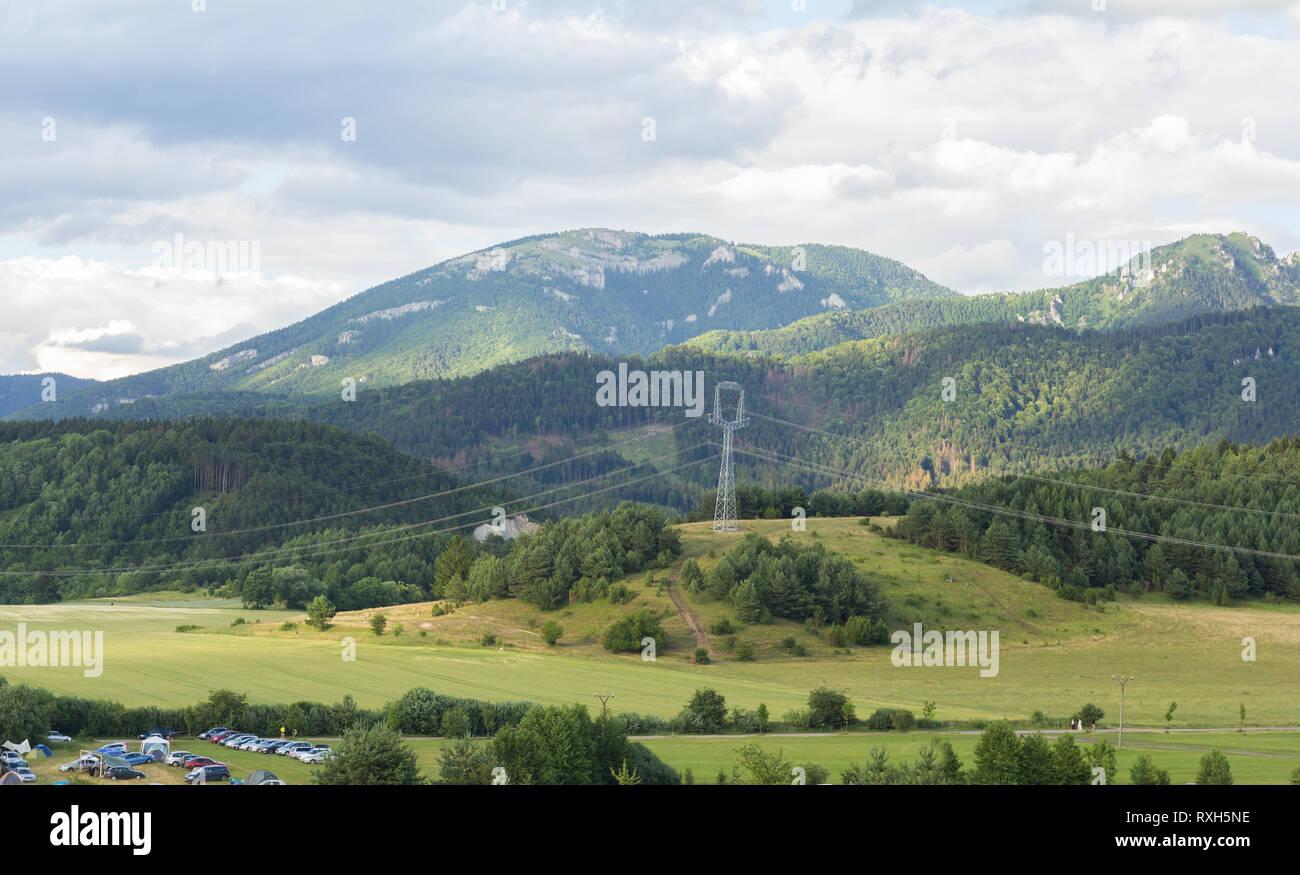 Generico paesaggio estivo con il bosco e i prati Immagini Stock