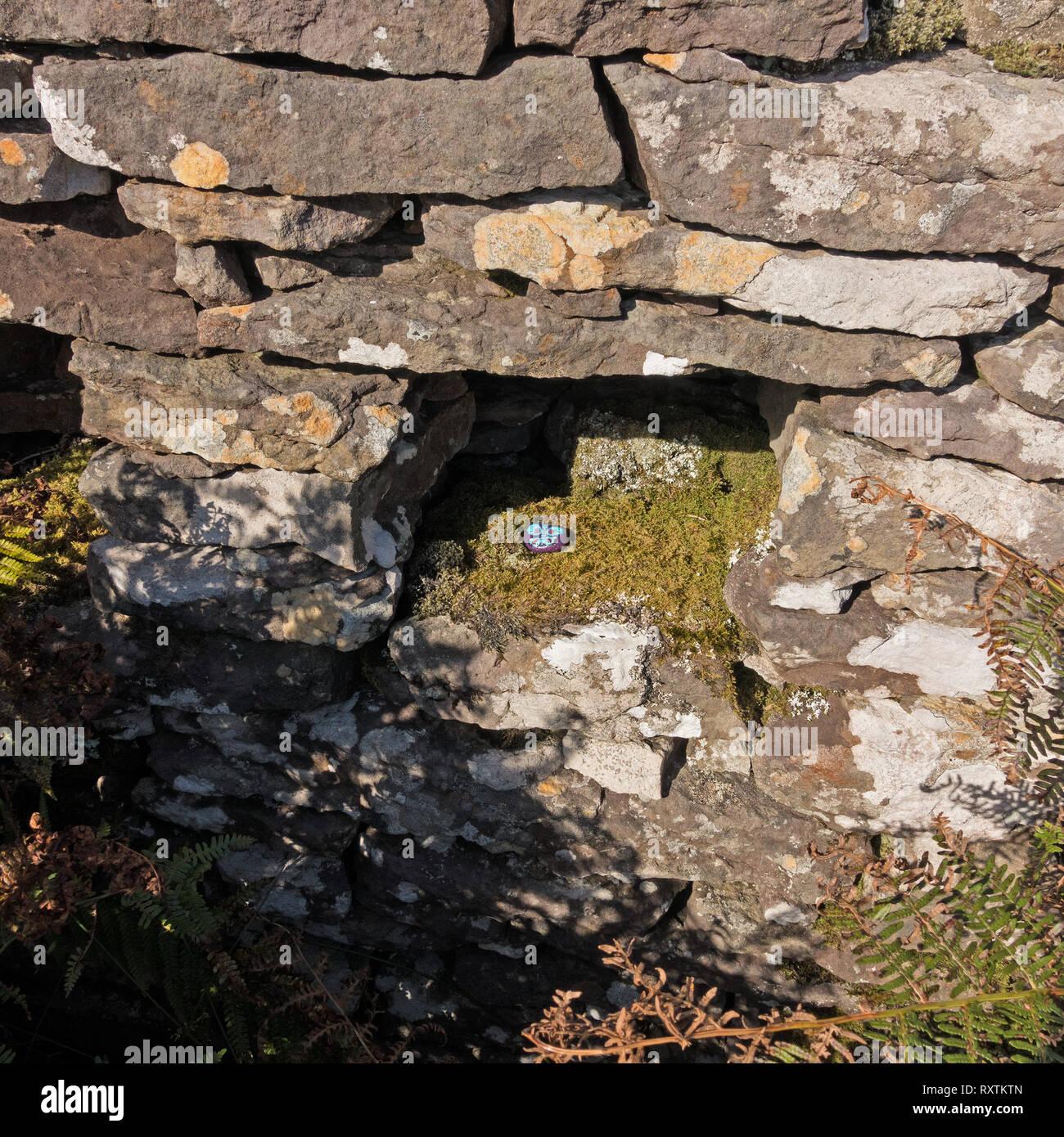 West Coast roccia dipinta (#WCPR). Uno nascosto e trovato dipinto e verniciato di ghiaia, Skye, Scotland, Regno Unito Immagini Stock