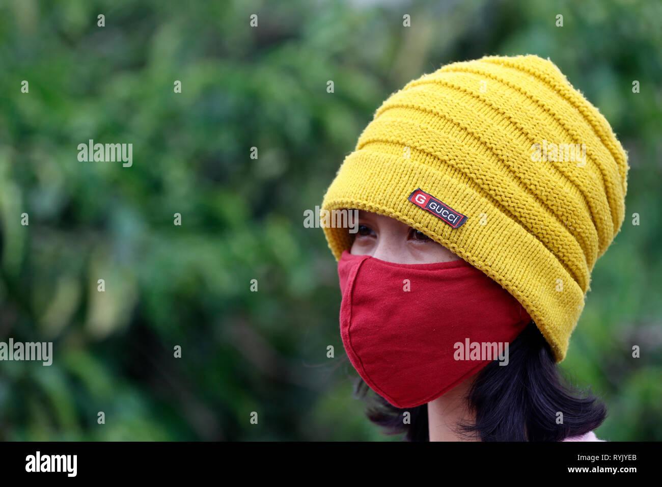 Giovane donna che indossa una maschera di inquinamento. Dalat. Il Vietnam. Immagini Stock
