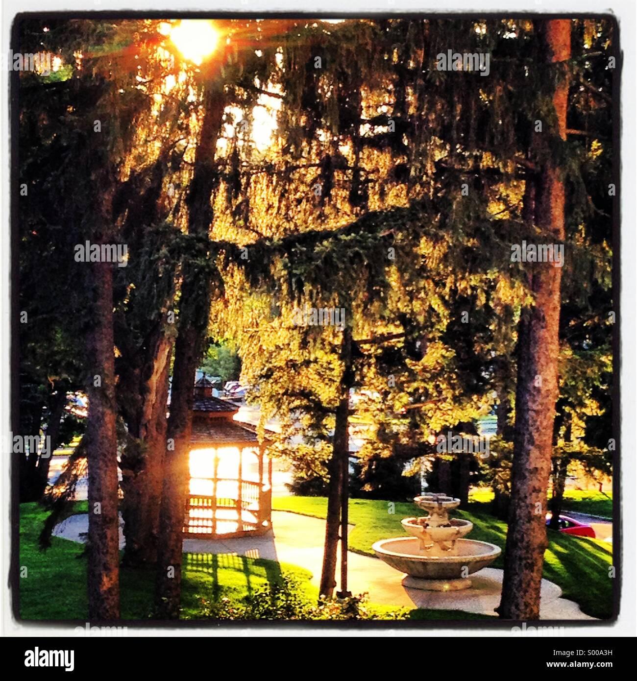 Un gazebo e gli alberi sono retroilluminati da fine giorno sun. Immagini Stock