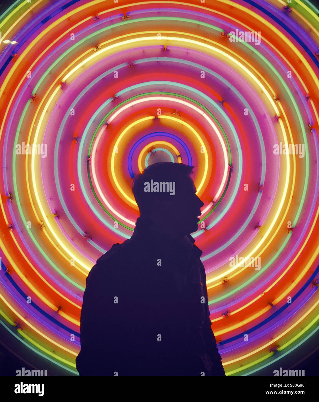 Profilo di neon Immagini Stock