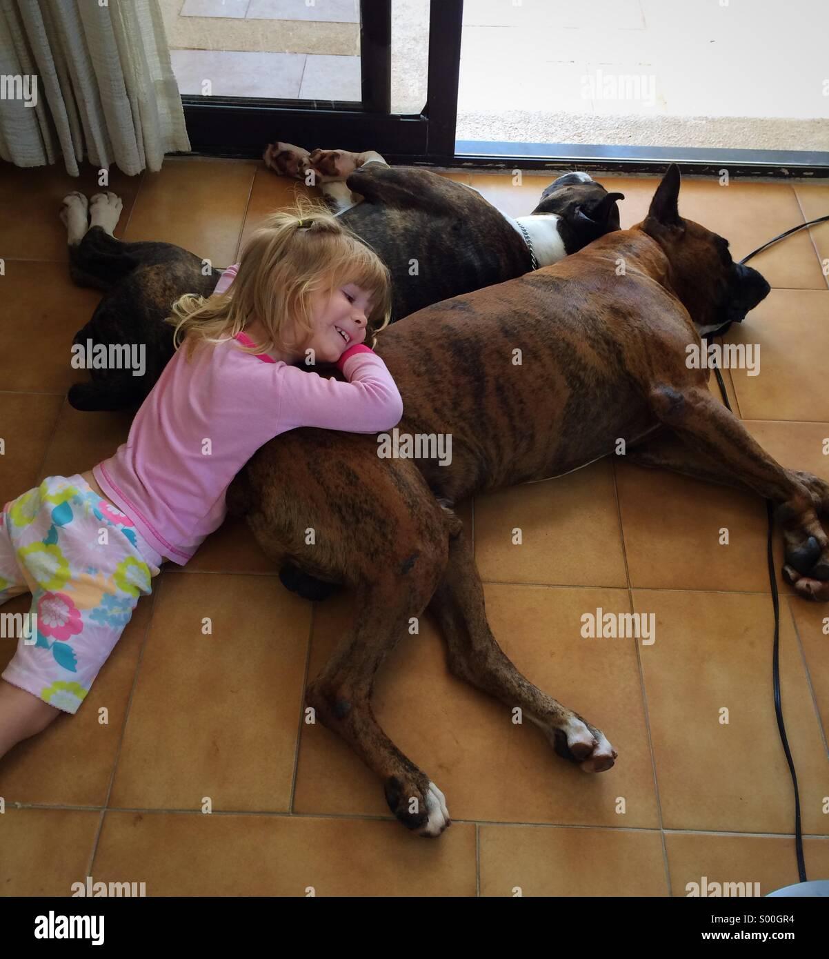 Bambina relax su una domenica pomeriggio con il suo pane boxer cani Foto Stock