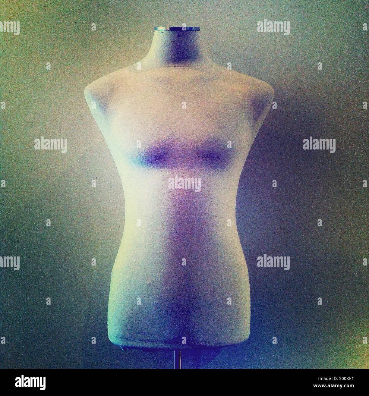 Forma del vestito Immagini Stock