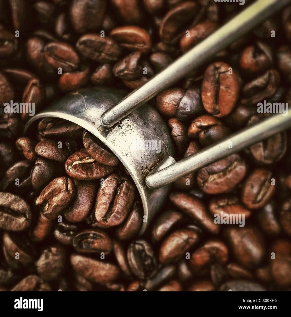I chicchi di caffè close up Immagini Stock