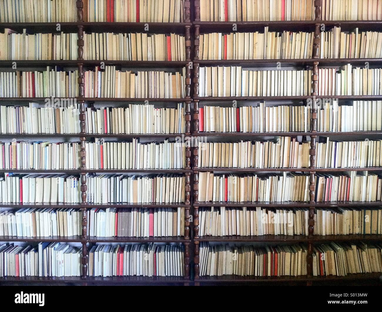 Grande raccolta di libri in biblioteca Immagini Stock