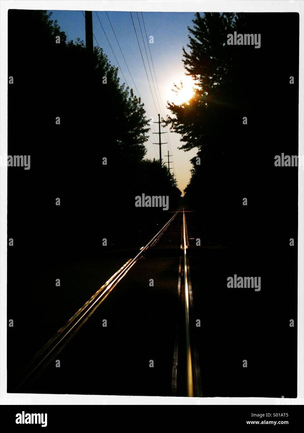 I binari della ferrovia. Immagini Stock
