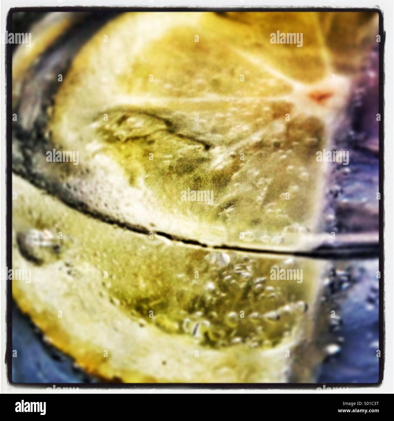 Gin & tonic Immagini Stock