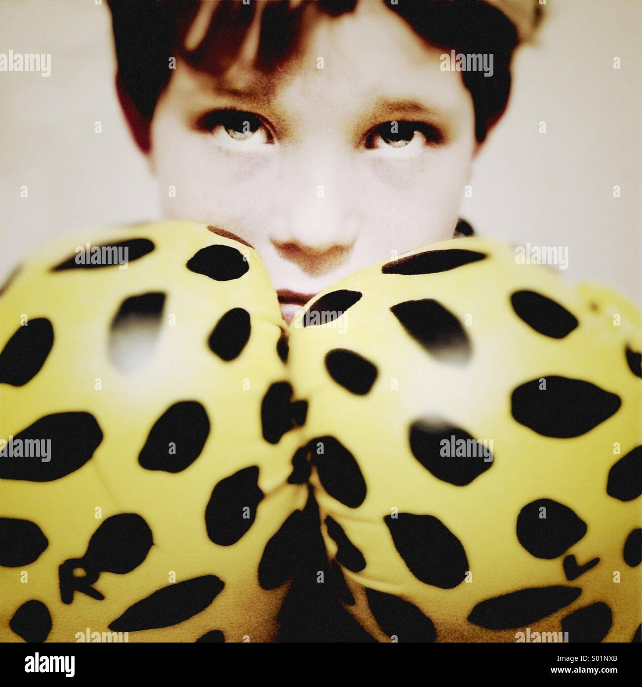 Giovane ragazzo indossa guantoni da pugilato guarda wide eyed su una posa difensiva Foto Stock