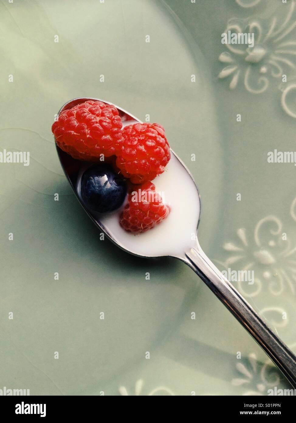 Cucchiaio con frutti di bosco e latte Immagini Stock