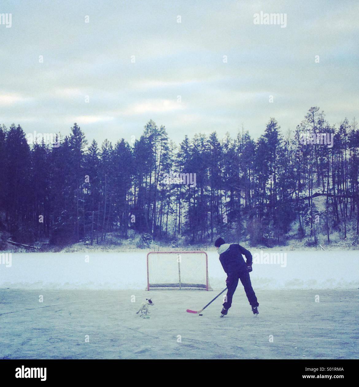 Paesaggio canadese: un ragazzo a giocare a hockey su un laghetto congelato con il suo cane nel rimorchio. Immagini Stock