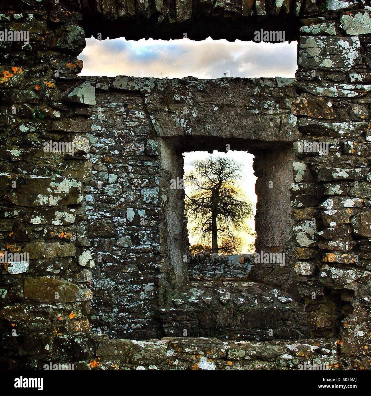 Attraverso la finestra quadrata... Immagini Stock