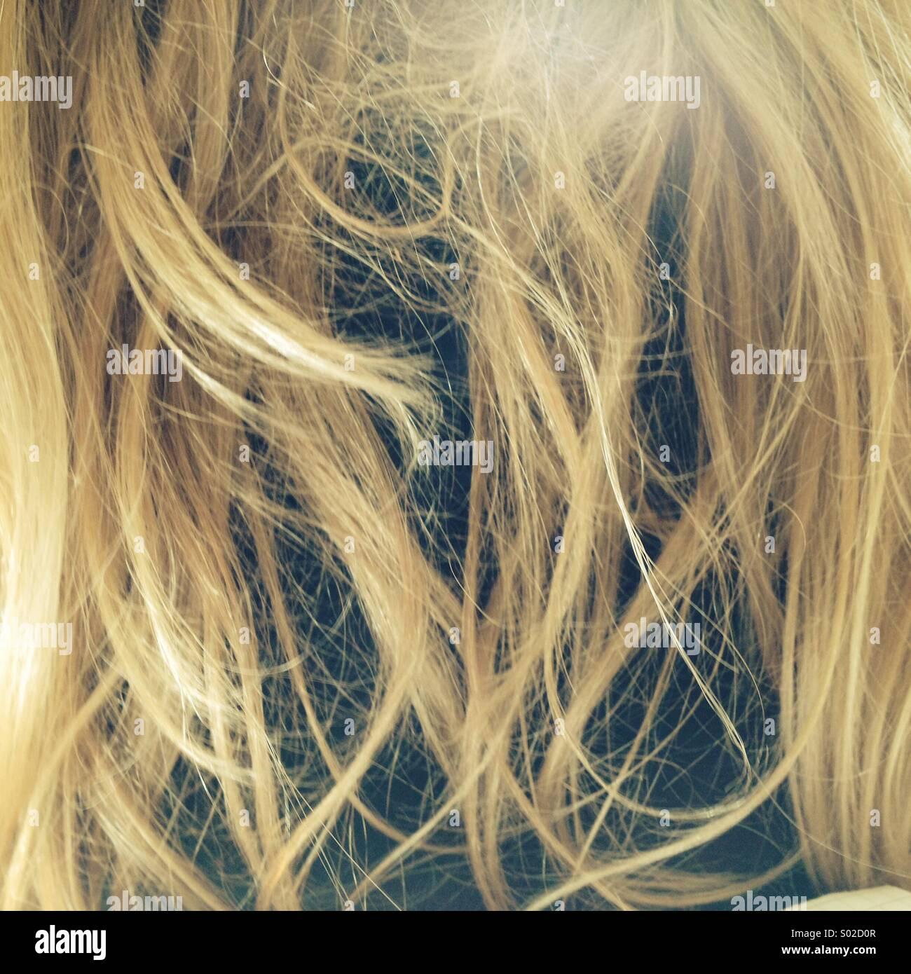 Tangled disordinati capelli biondi Immagini Stock