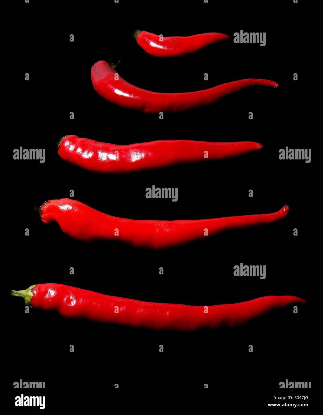 Peperoni rossi Immagini Stock