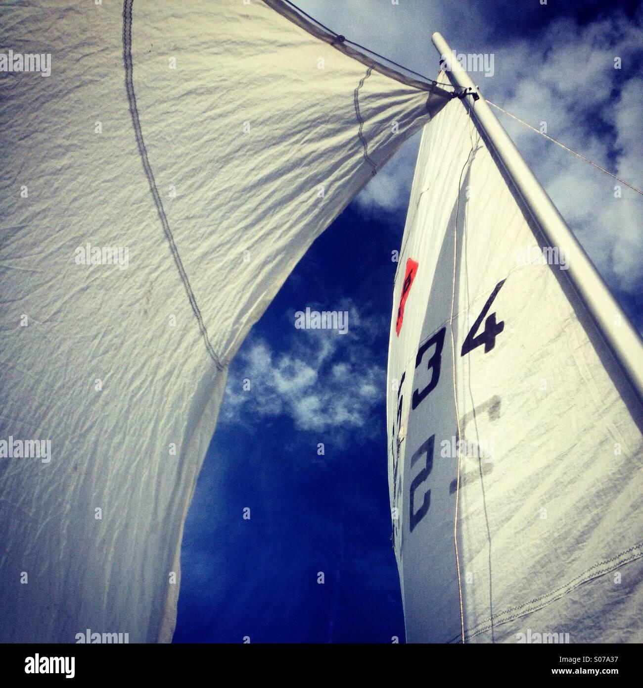 A vele spiegate di vento su un idilliaco giorno di sole... Immagini Stock