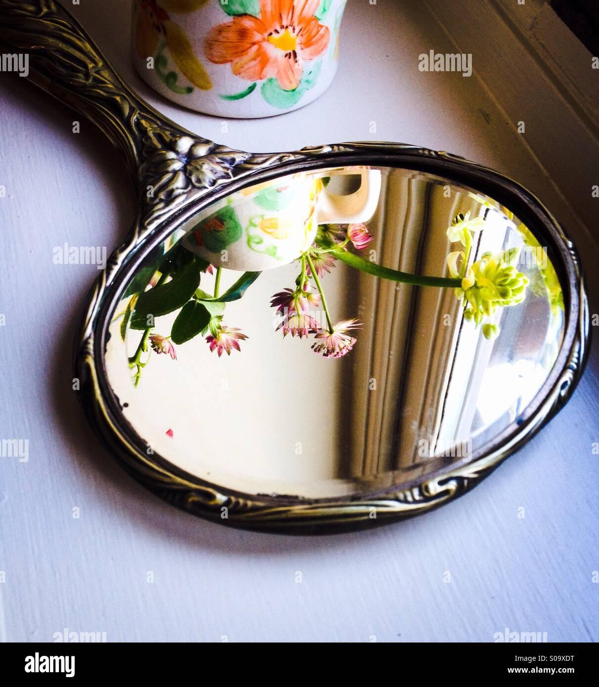 Specchio a mano Immagini Stock