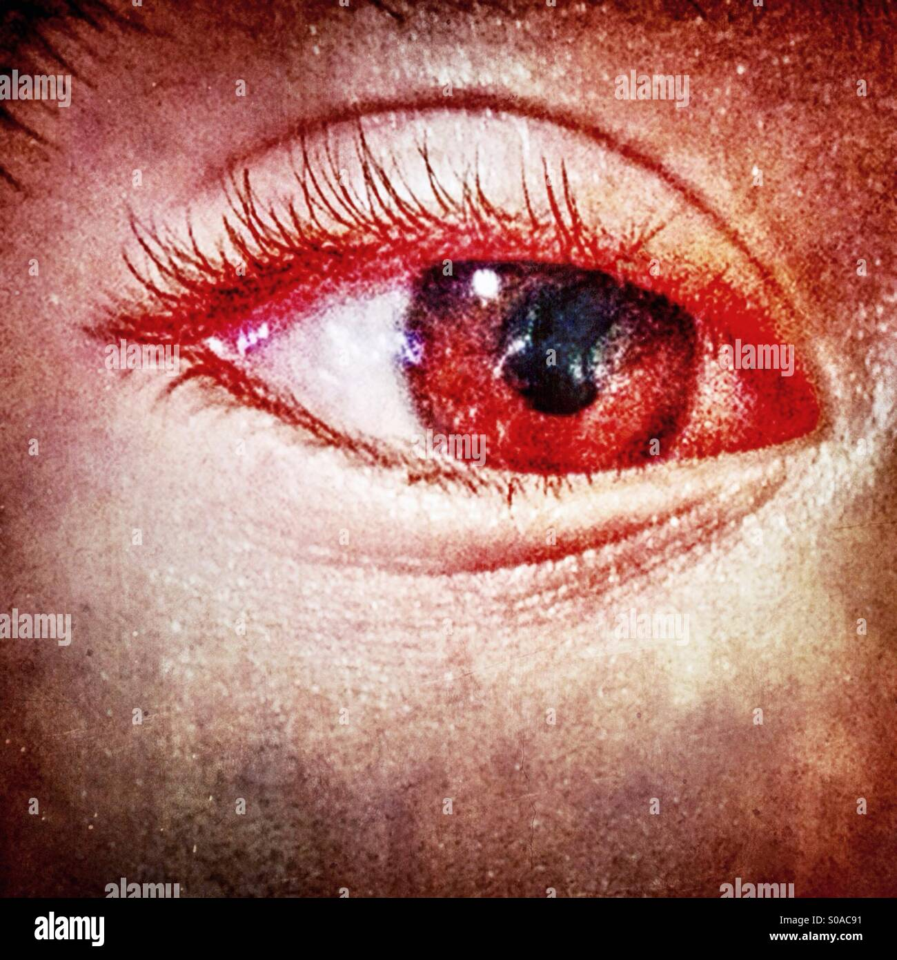 Primo piano di un occhio umano. Immagini Stock