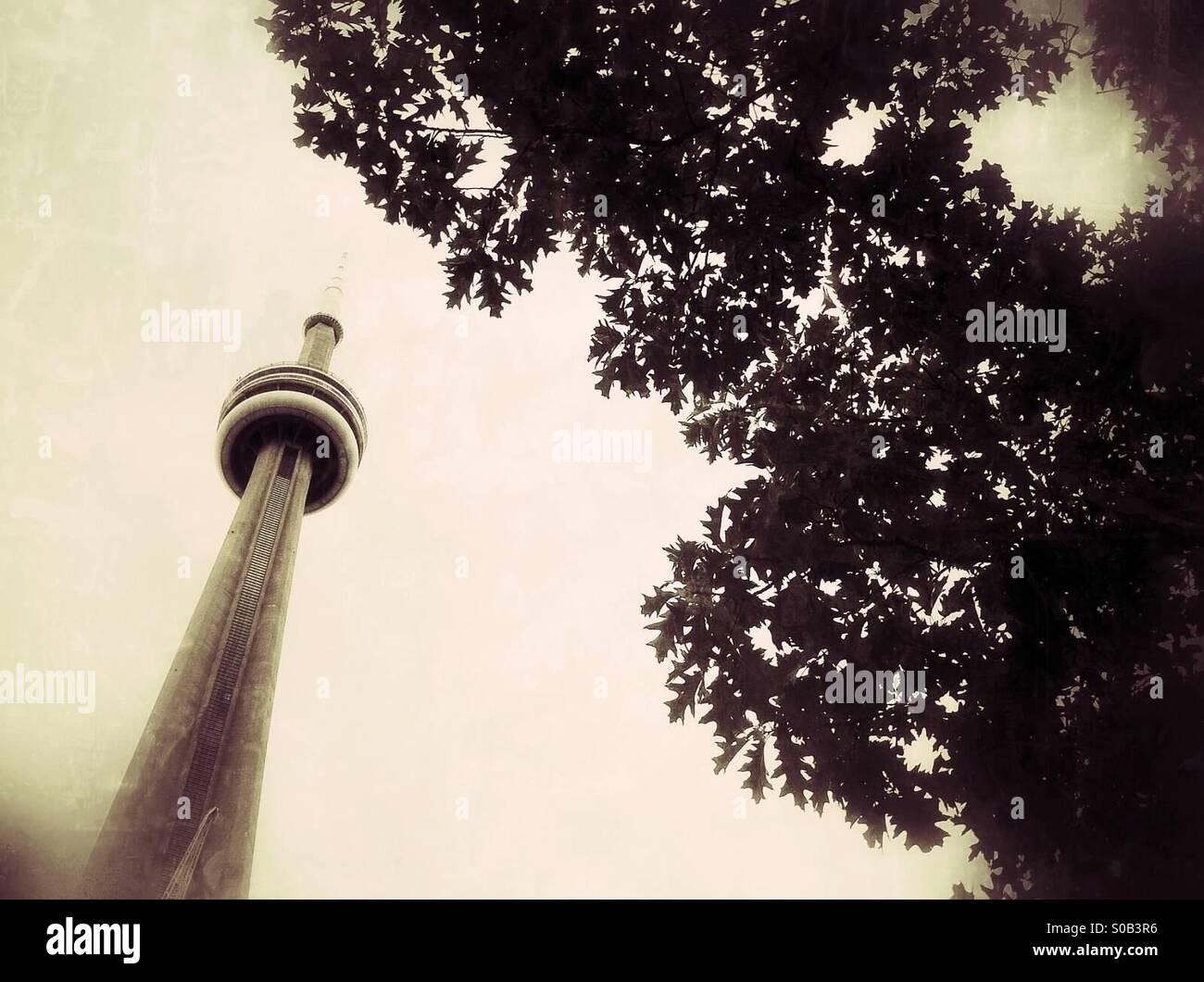 La CN Tower a Toronto in Canada Foto Stock
