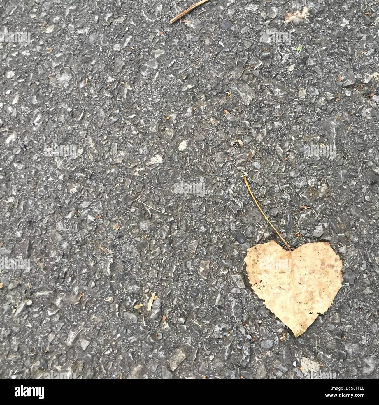 Amore nella pavimentazione Foto Stock