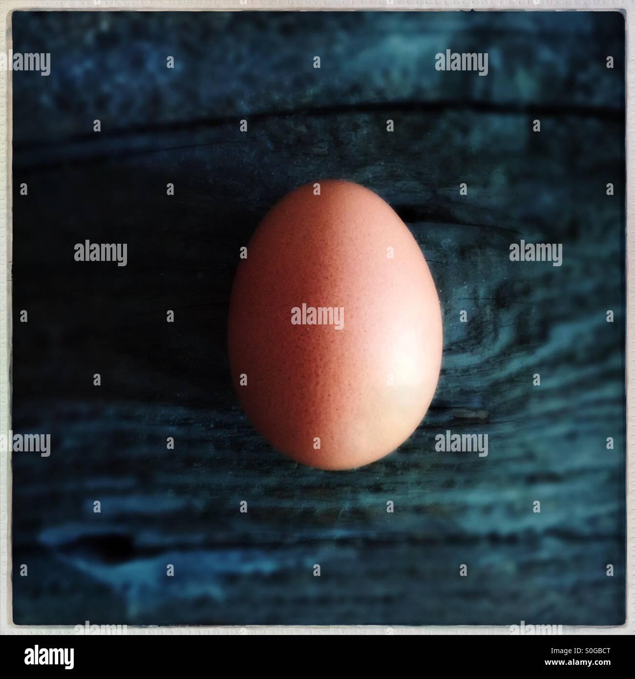 Un uovo marrone Immagini Stock
