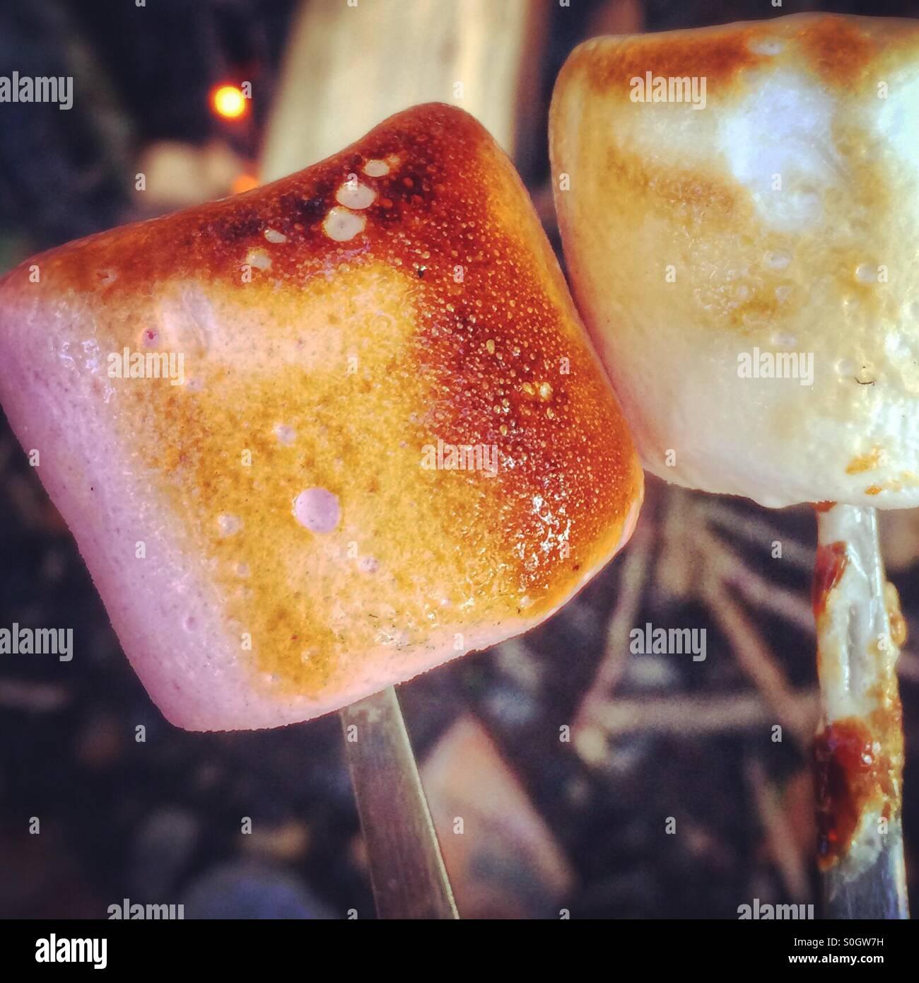 Due marshmallows tostato Immagini Stock