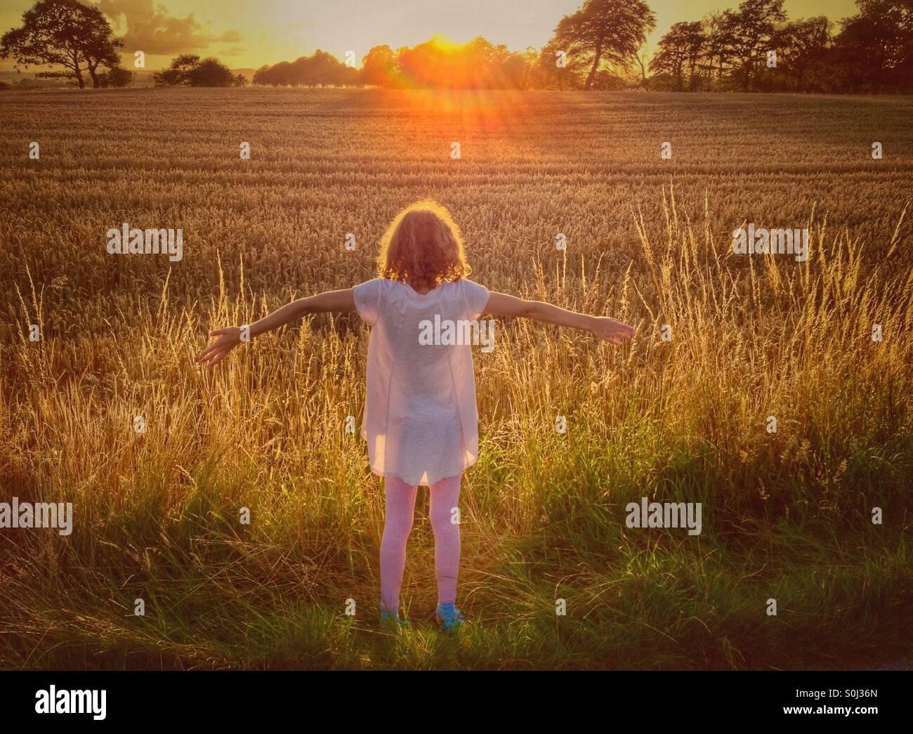 Ragazza giovane accogliente sole di setting al di sopra di un maturo campo di grano Immagini Stock