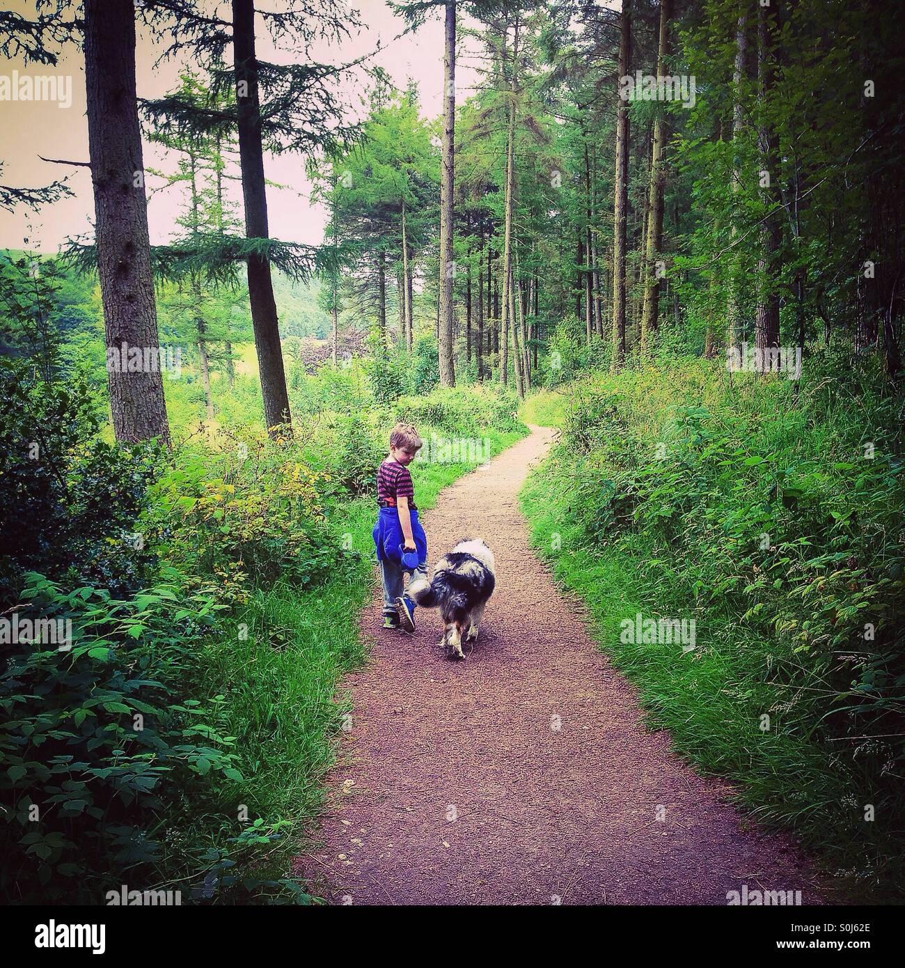 Ragazzo e cane sul bosco a piedi. Immagini Stock