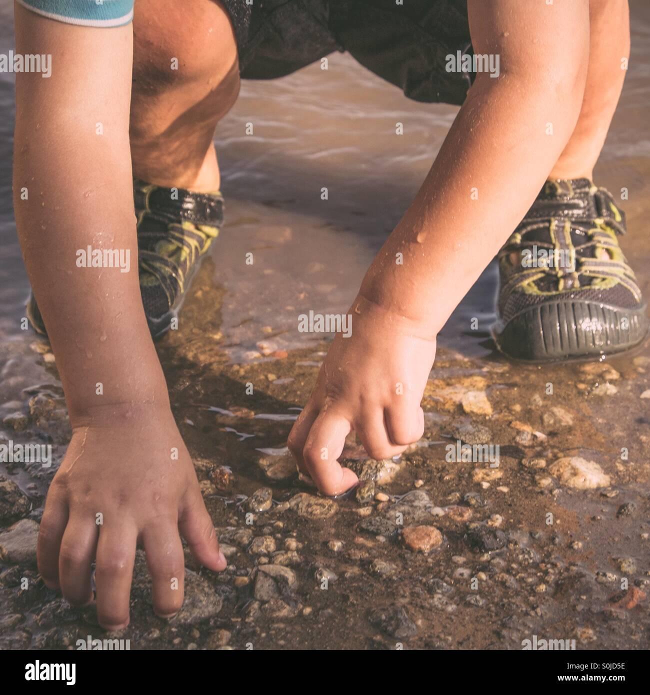 Bimbo a mani di prelevare le rocce in acqua poco profonda Foto Stock