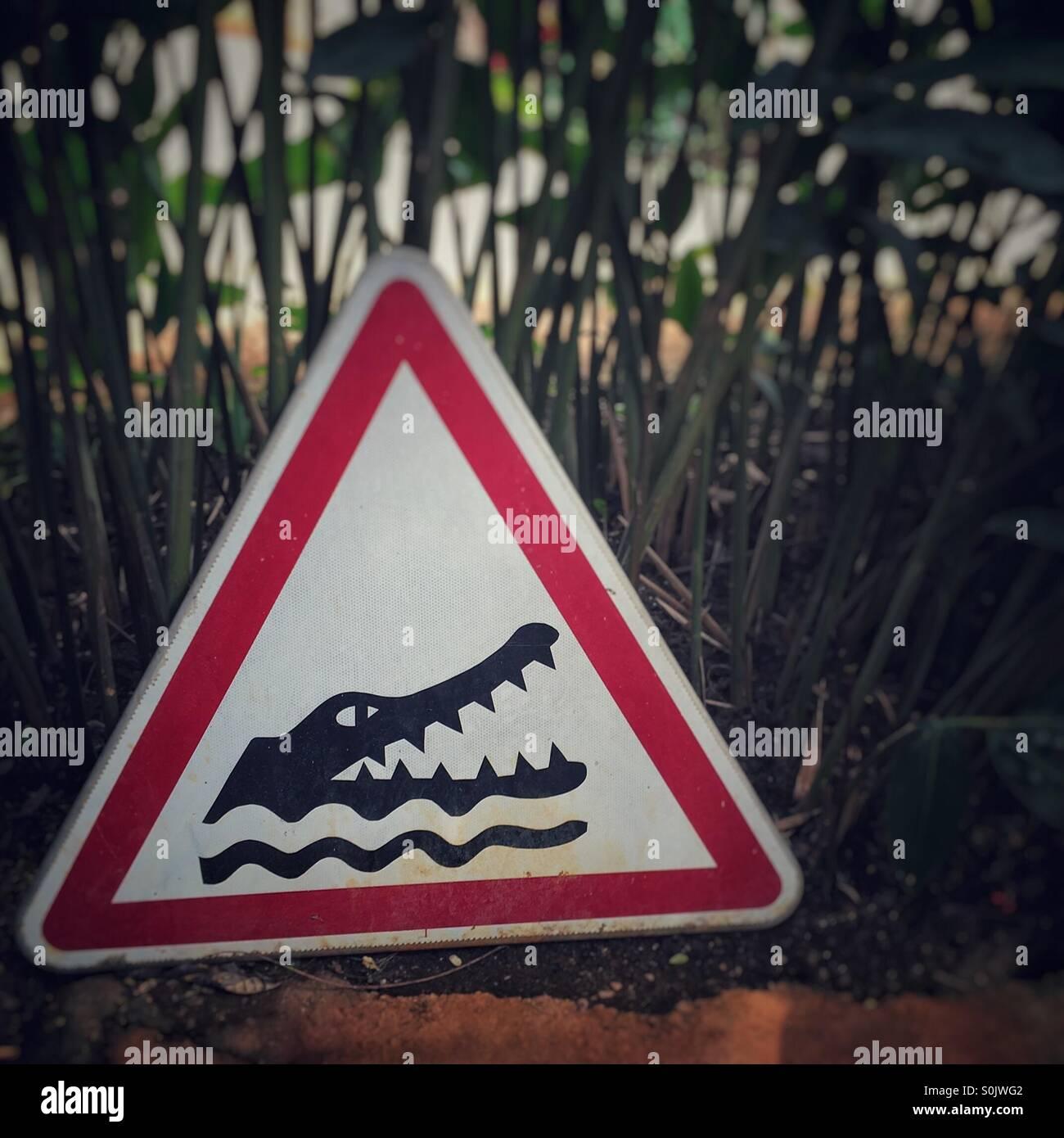 Avvertenza coccodrillo ! Immagini Stock