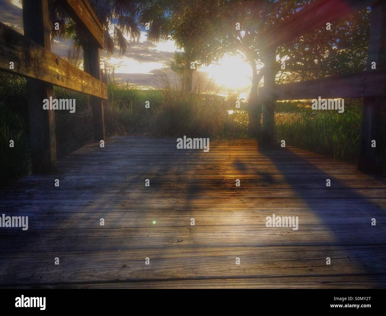 Ver el sol caer,es onu motivo que alegra el corazón Immagini Stock
