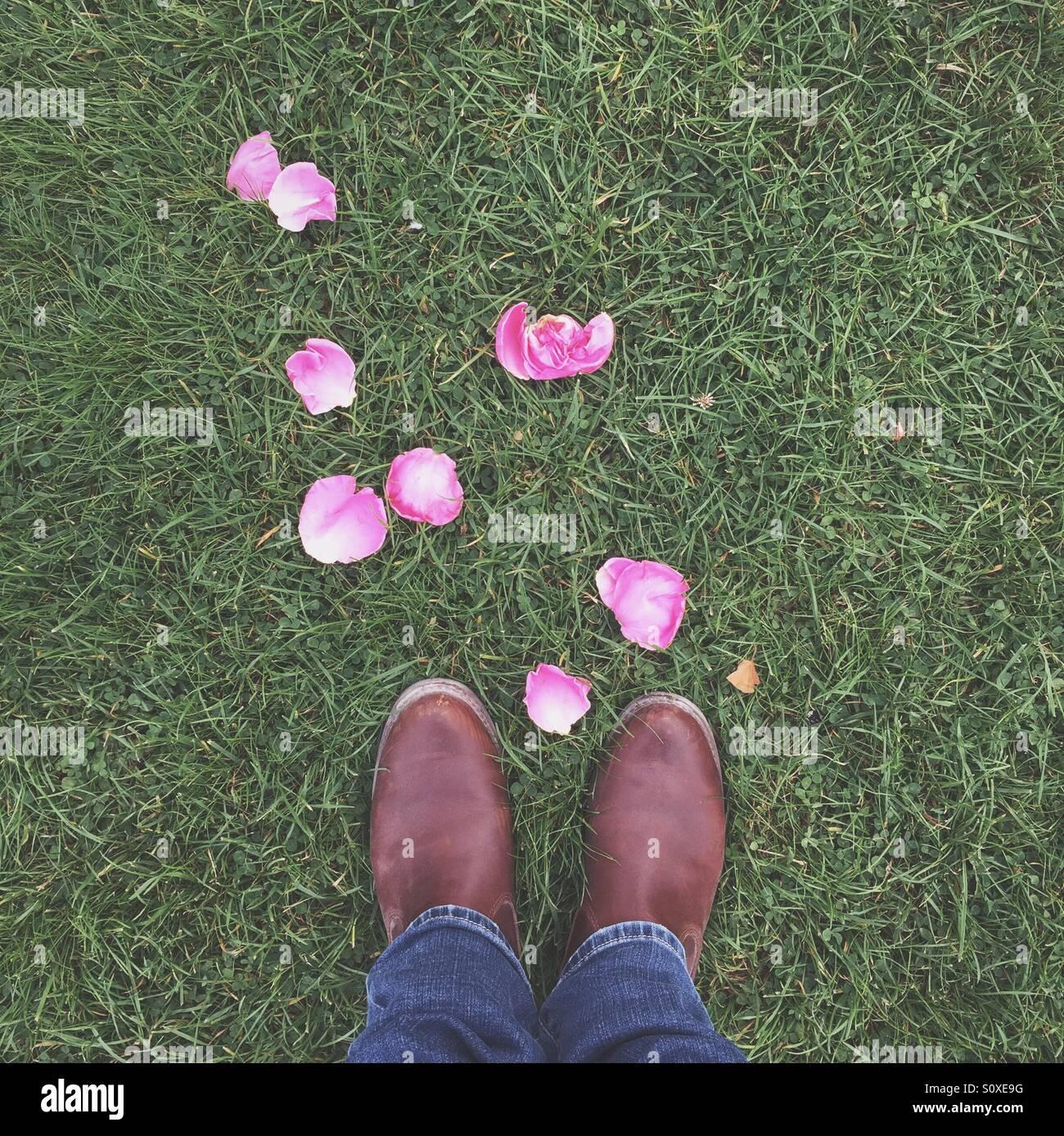 Signora con petali di rosa Immagini Stock