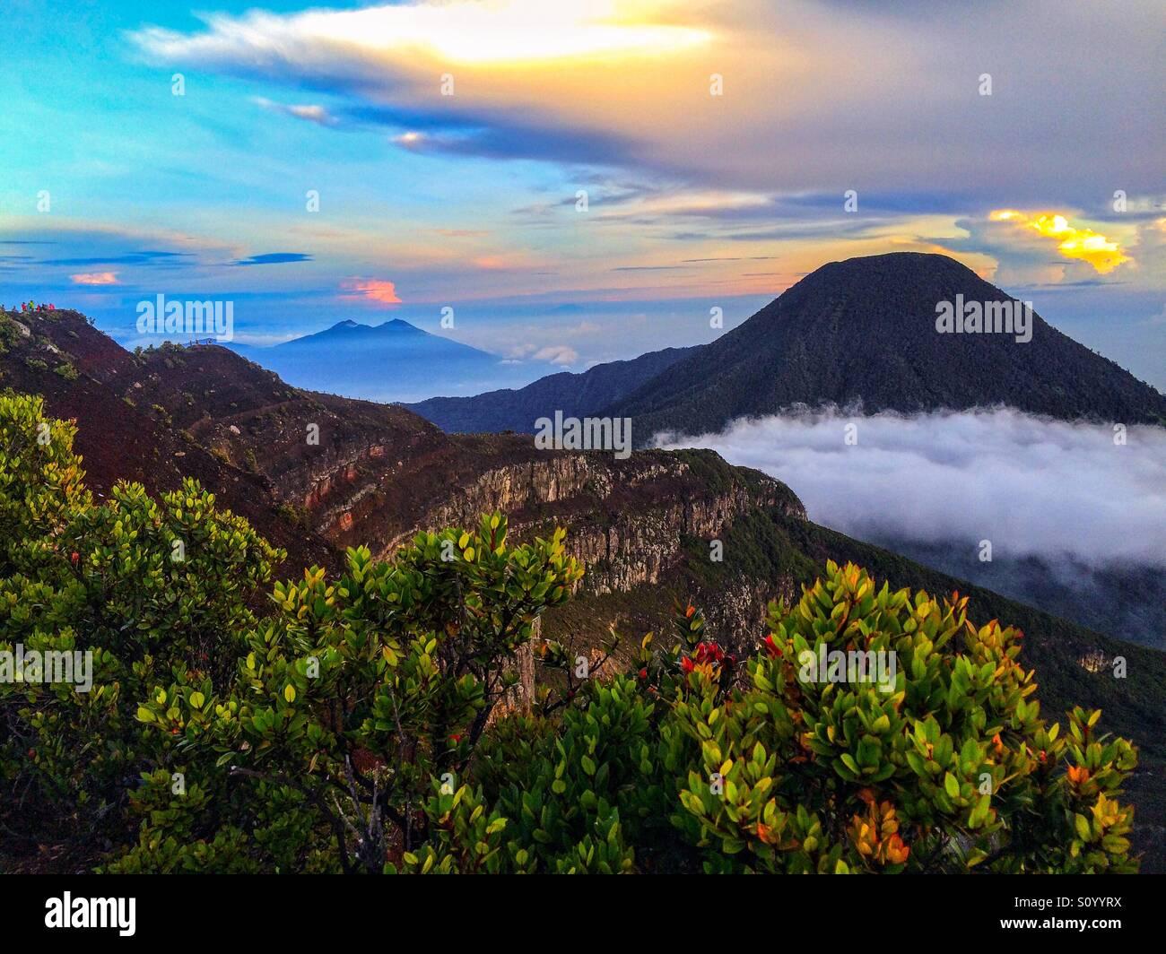 Bellissima natura di Gunung Gede Pangrango❤️ Immagini Stock