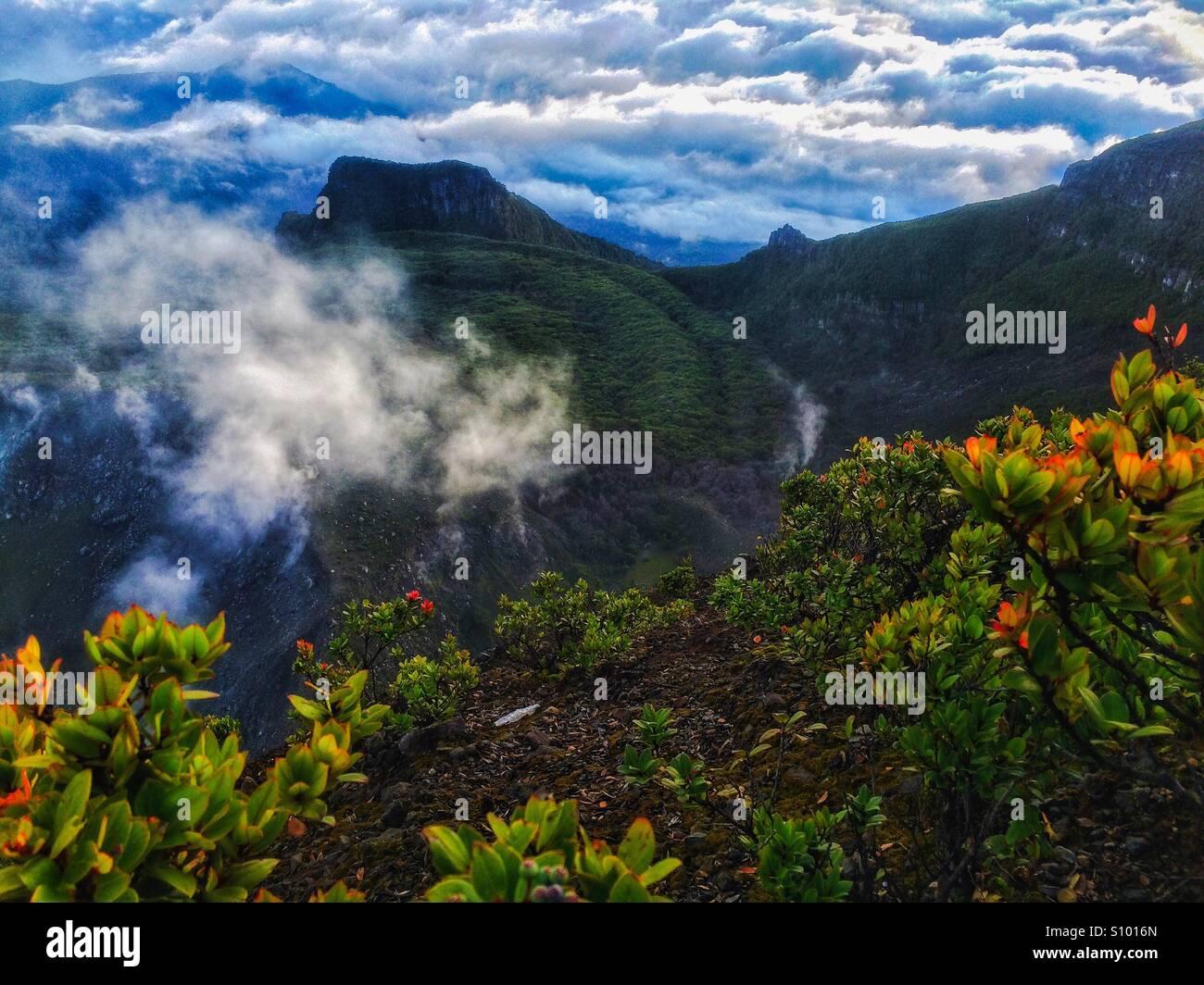 Bellissima natura di Gunung Gede Pangrango Immagini Stock