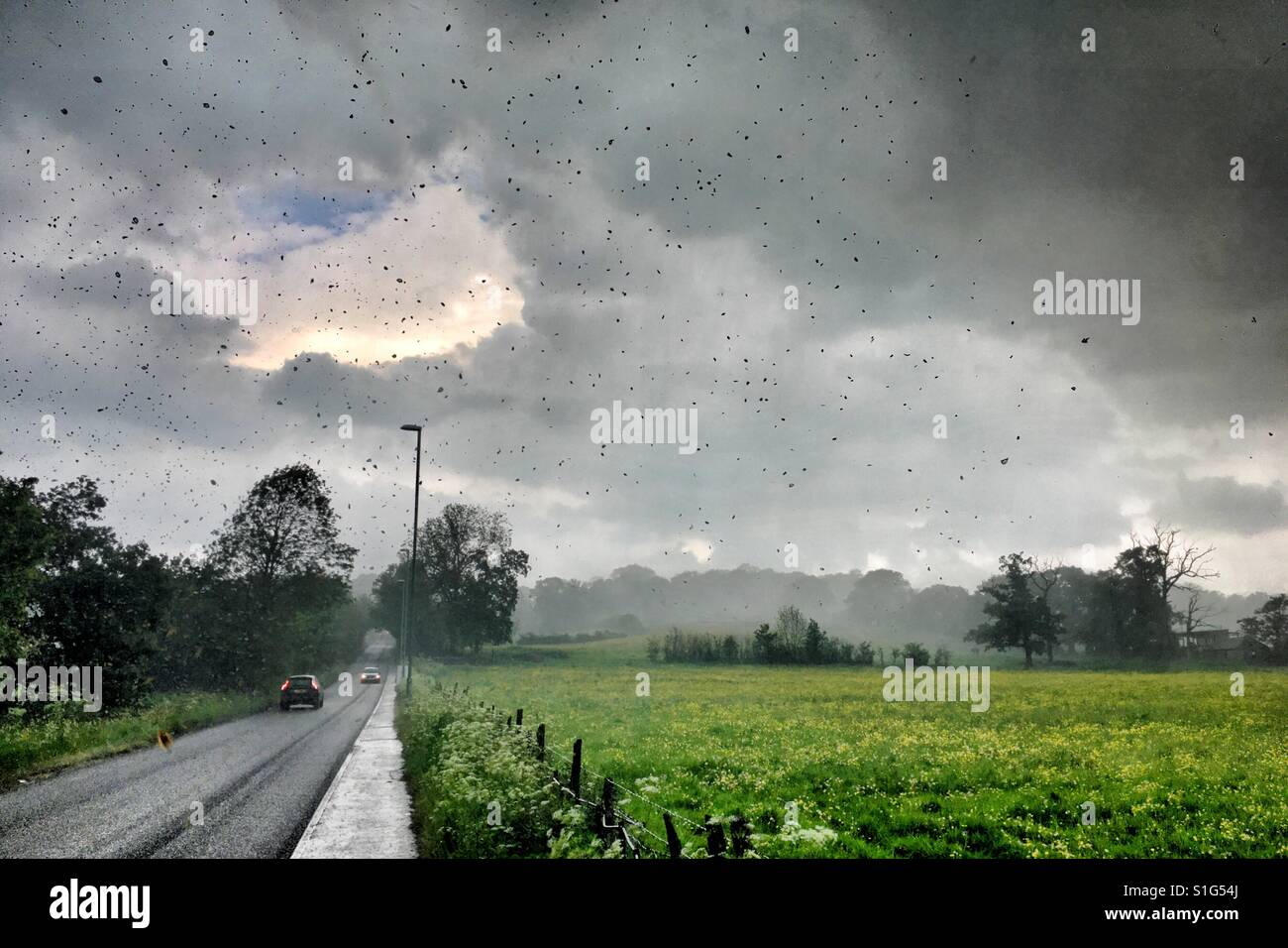 Heavy Rain in U.K. Tempesta di estate Immagini Stock