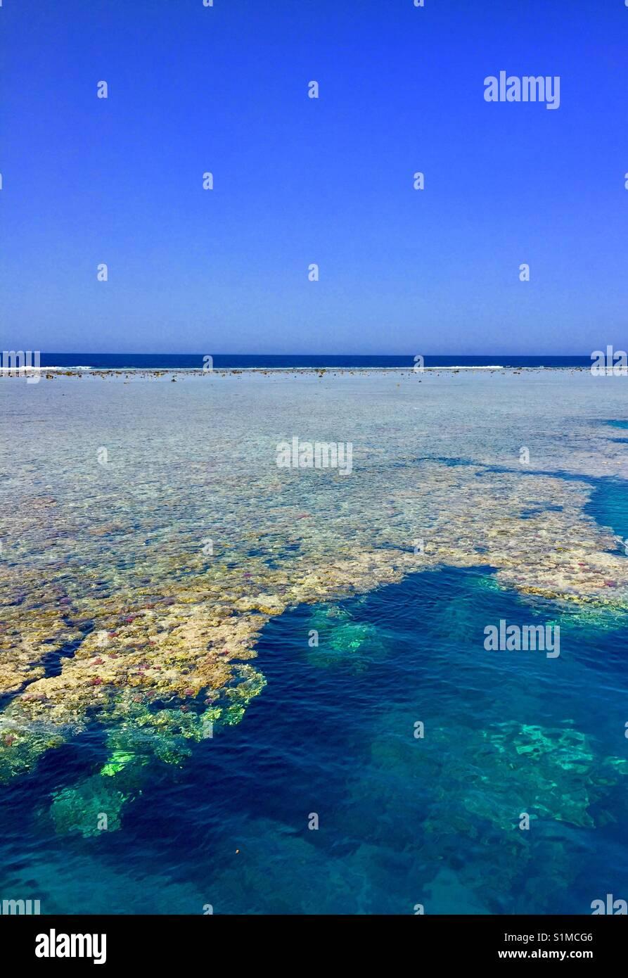 Mare blu con magnifiche barriere coralline , Marsa Allam , Egitto Immagini Stock