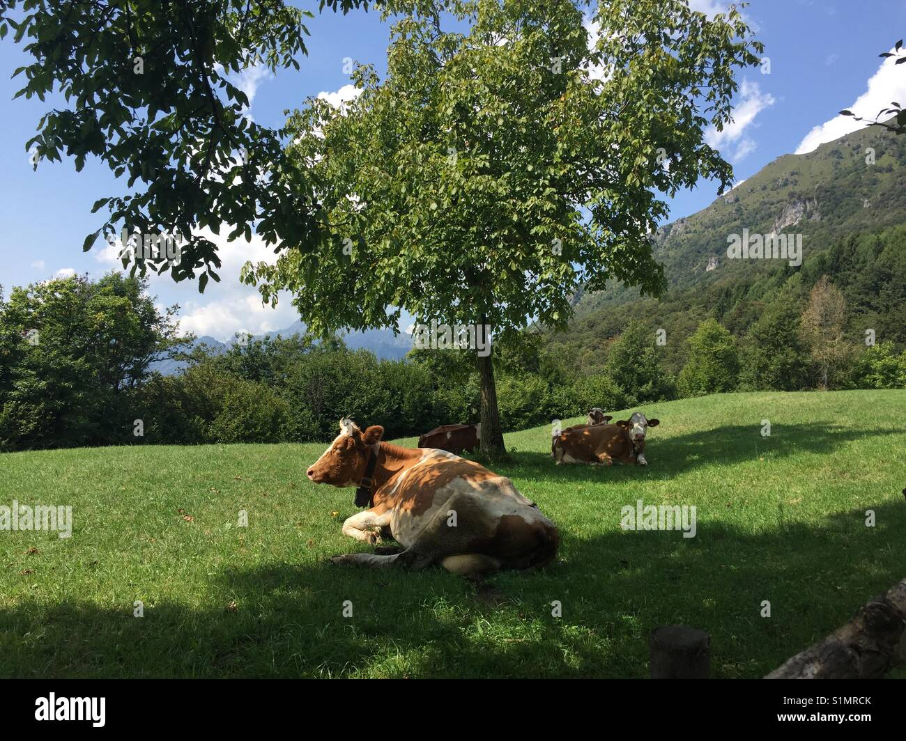 Grandola ed Uniti, Italia. Immagini Stock