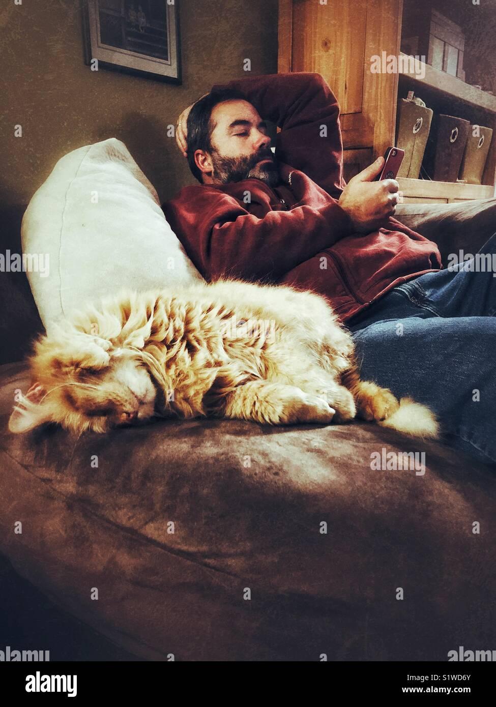 Uomo con barba scura rilassante sulla poltrona utilizza lo smartphone con grandi orange cat dormire in una bella Immagini Stock