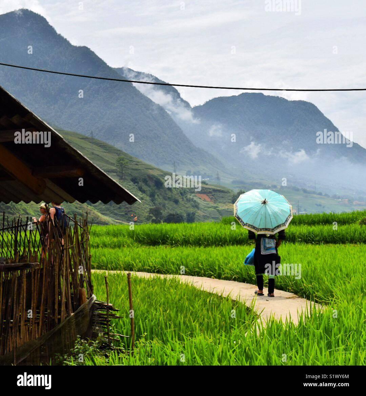 La bellissima valle di Sapa, Vietnam Immagini Stock