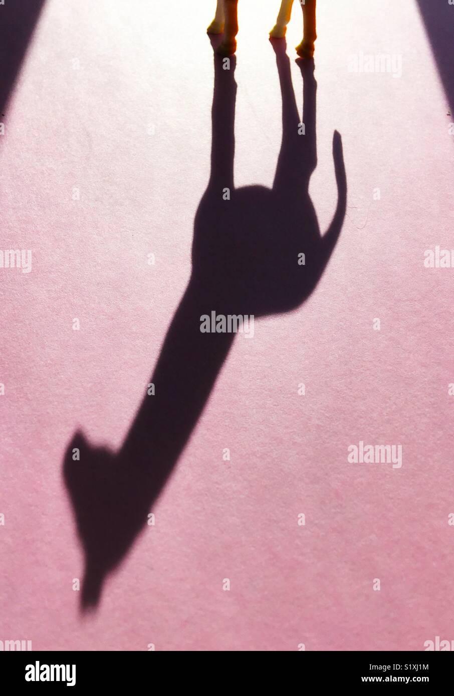 Ombra di una giraffa giocattolo. Immagini Stock