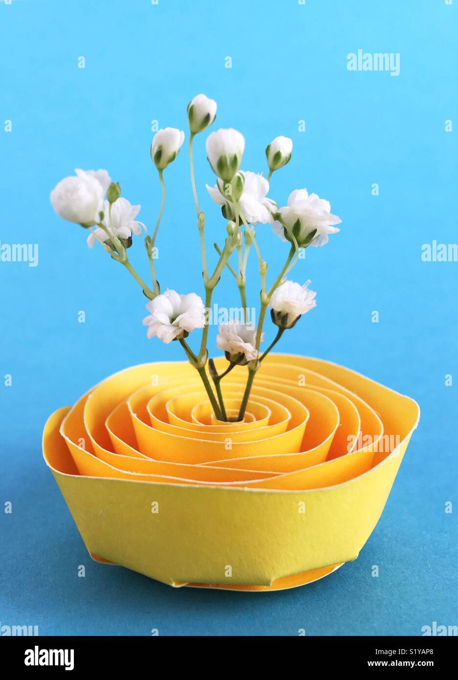 Baby l'alito di fiori in un supporto di carta. Immagini Stock